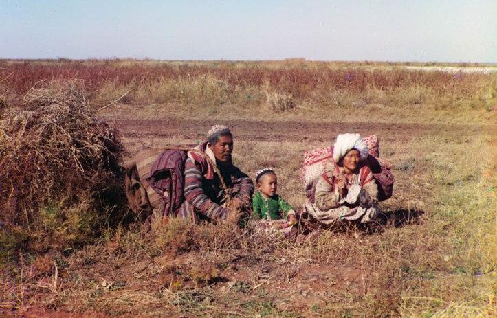 4-Nomadic-Kirghiz-on-the-Golodnaia-Steppe-in-present-day-Uzbekistan-and-Kazakhstan-ca.-1910
