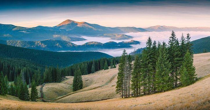 JUara ke 6. Pemandangan di taman nasional Carpathian, Zakarpattia Oblast, Ukraine. By Vian [CC BY-SA 4.0 license], via Wikimedia Commons
