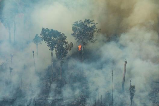 Amazon Burning Overflight