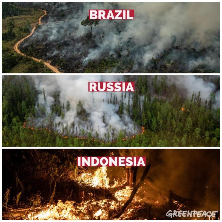 indonesia russia brasil